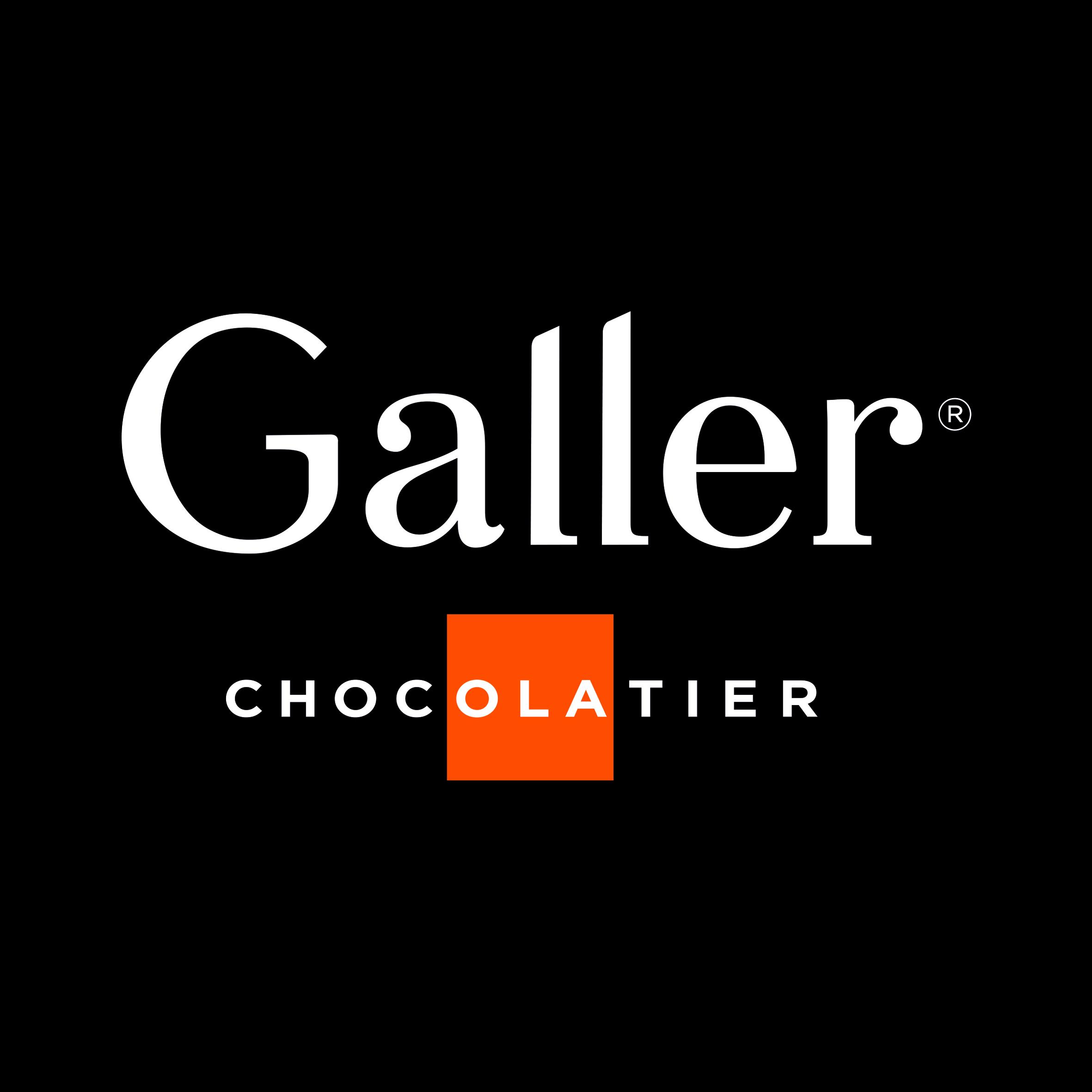 logo_galler